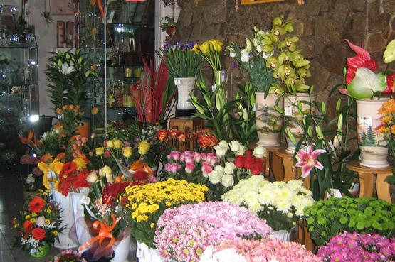Interior florarie Florimex