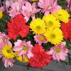 aranjament floral in cos cu garoafe si crizanteme