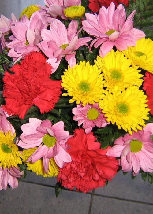 AFN-03 Aranjament in cos cu 7 garoafe , 4 crizanteme si ver