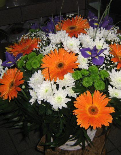 Aranjament in cos cu gerbera , iris ,crizanteme si verdeata