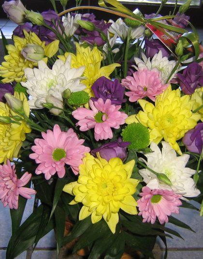 Aranjament in cos cu crizanteme , eustoma si verdeata