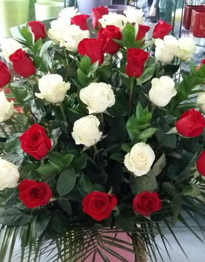 Aranjament in vas ceramic cu 33 trandafiri albi si rosii