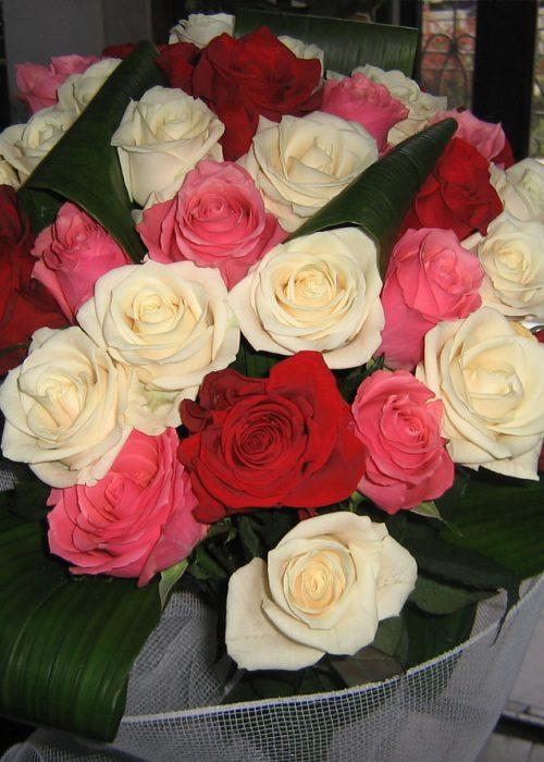 B-07 Buchet 29 trandafiri multicolor cu aspidistra si ambala