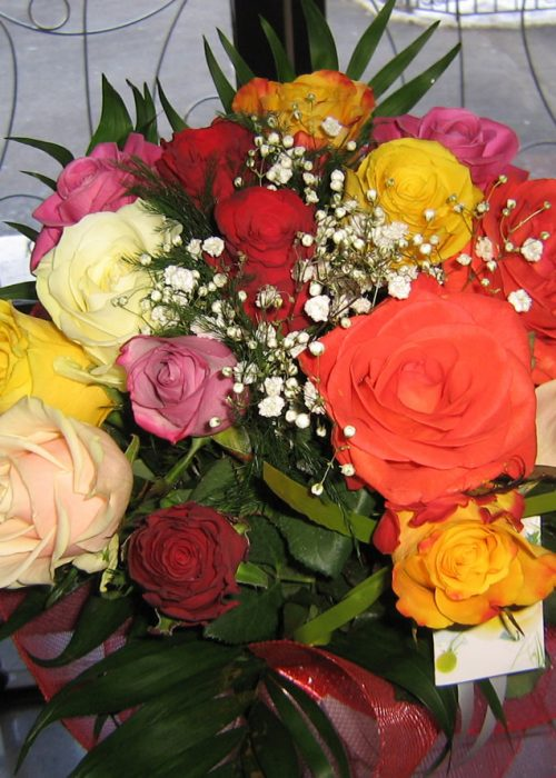 B-14 Buchet pe rotund cu 15 trandafiri multicolor , gypsophi